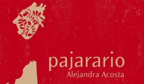 Pajarario-730x1024